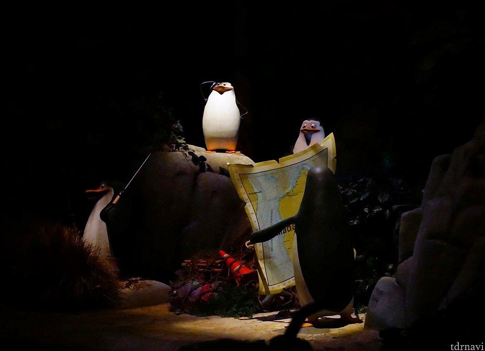 ペンギンズもいい味出してます‼