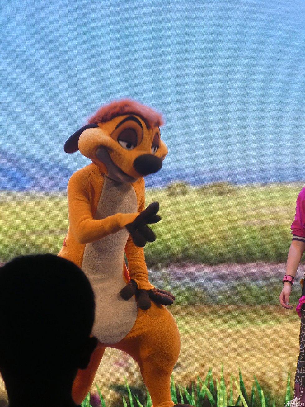 ライオンガードはカイオン…ではなく、何故かティモン。(笑)