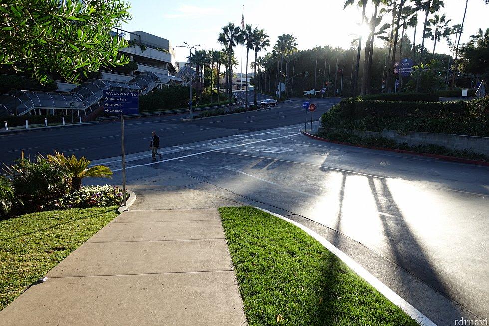 大通りに着いたら、右折して横断歩道を渡ります。