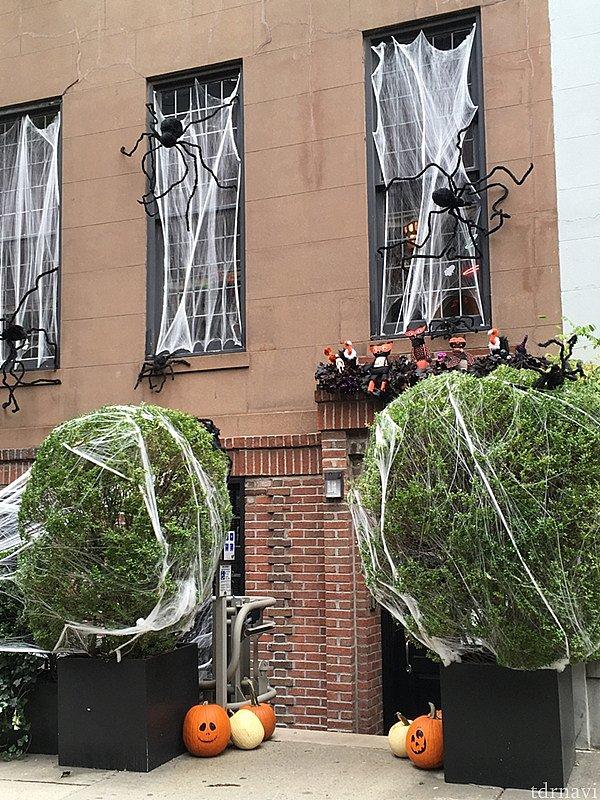 すべての窓にハロウィン装飾を施した家。 ドライバーが「ニューヨーカーはハロウィンに対してクレイジーだ」と笑ってました。