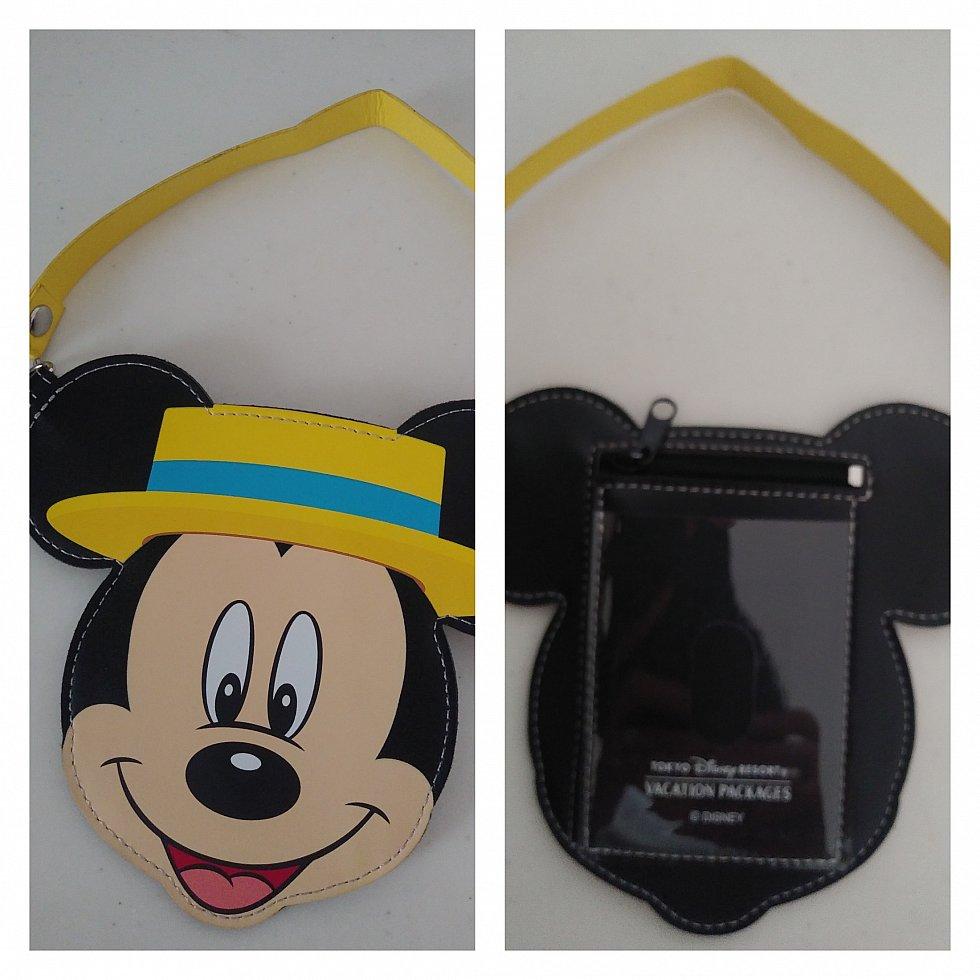 裏にはジッパー付きのポケットと、チケット・リゾラの切符が入る透明ホルダー