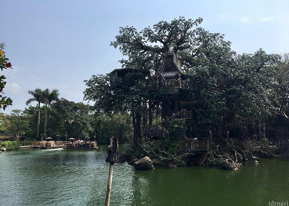樹の上にターザンの家が見えます。