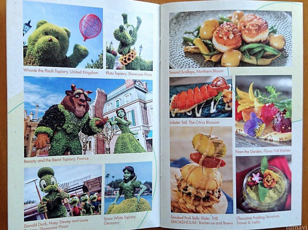 ブックレットにはお写真もありました。 ロブスター…🦐