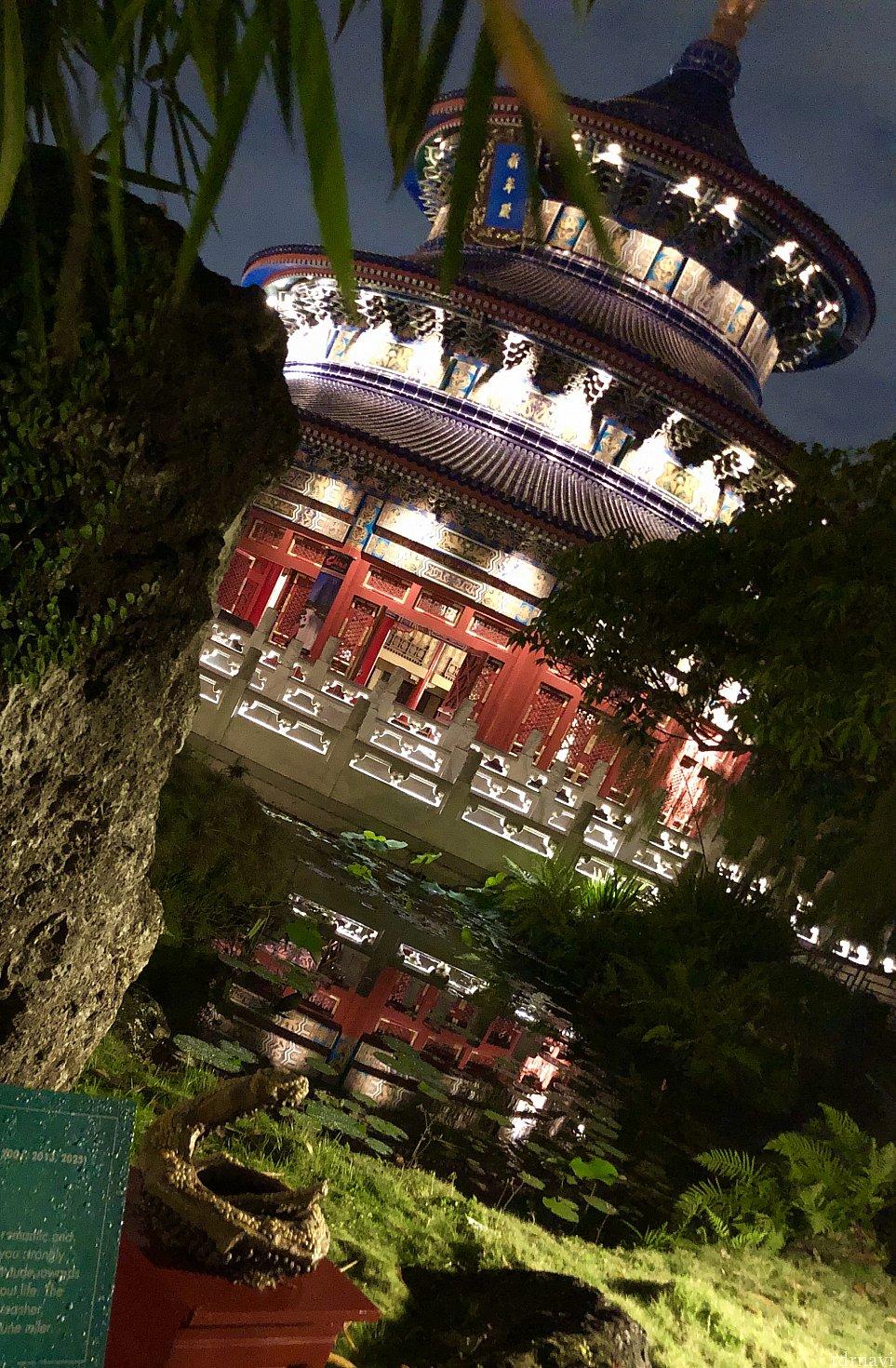 中国館には今年は干支にちなんだ植物の展示が。各国パビリオンには人があまり居ない隠れた小道などがあったりします。そんなところを毎回行く度に発見するパークです。