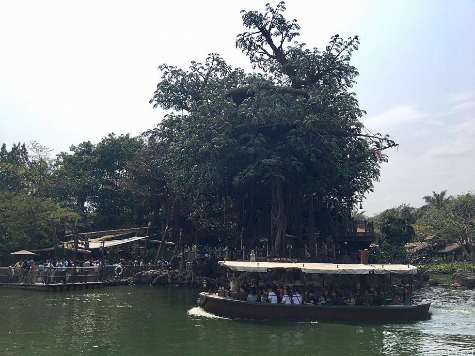 スタート地点と中洲の間の河をクルーズ船が横切ります。