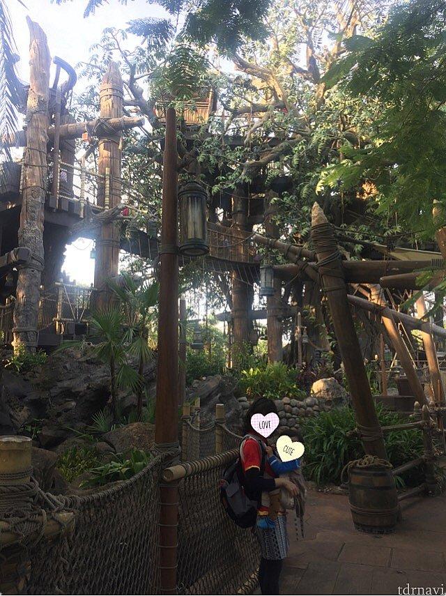 無事に完走です😜笑 バックパッカー並みのリュック背負って、息子を抱っこしながらのツリーハウス体験✨ 機会あれば筋トレにぜひ😚
