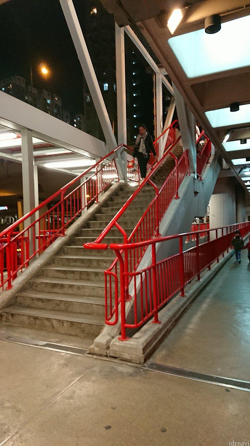 こちらの階段をのぼります。