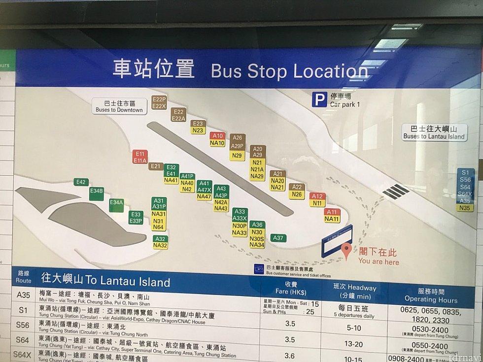 香港国際空港バス乗り場。空港から乗ると、バス停を降りてからも少し歩きます。空港行きバス降り場はS1バス停付近なので、すぐ空港ビル内に入れます