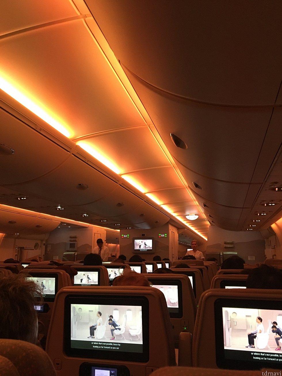 行きの機内です。深夜便なので少し機内暗めです。