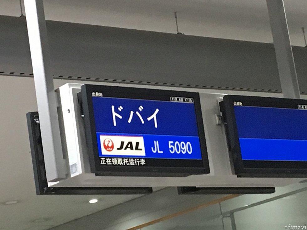 往復とも、JALとの共同運行でした。