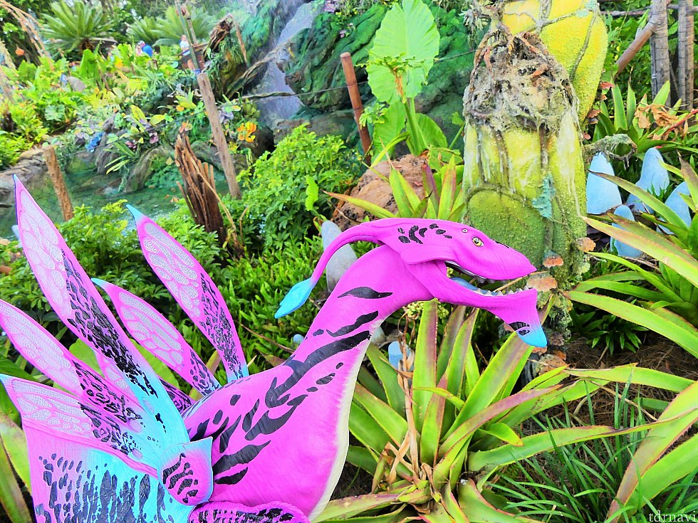 パンドラにしかない不思議な植物との相性もピッタリです。