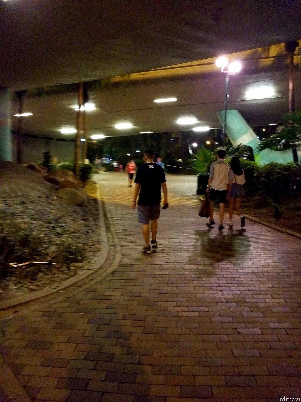 いきなり夜でごめんなさい😣上写真を道なりに歩いていたら道路下を通って向こう側に渡れる道があります