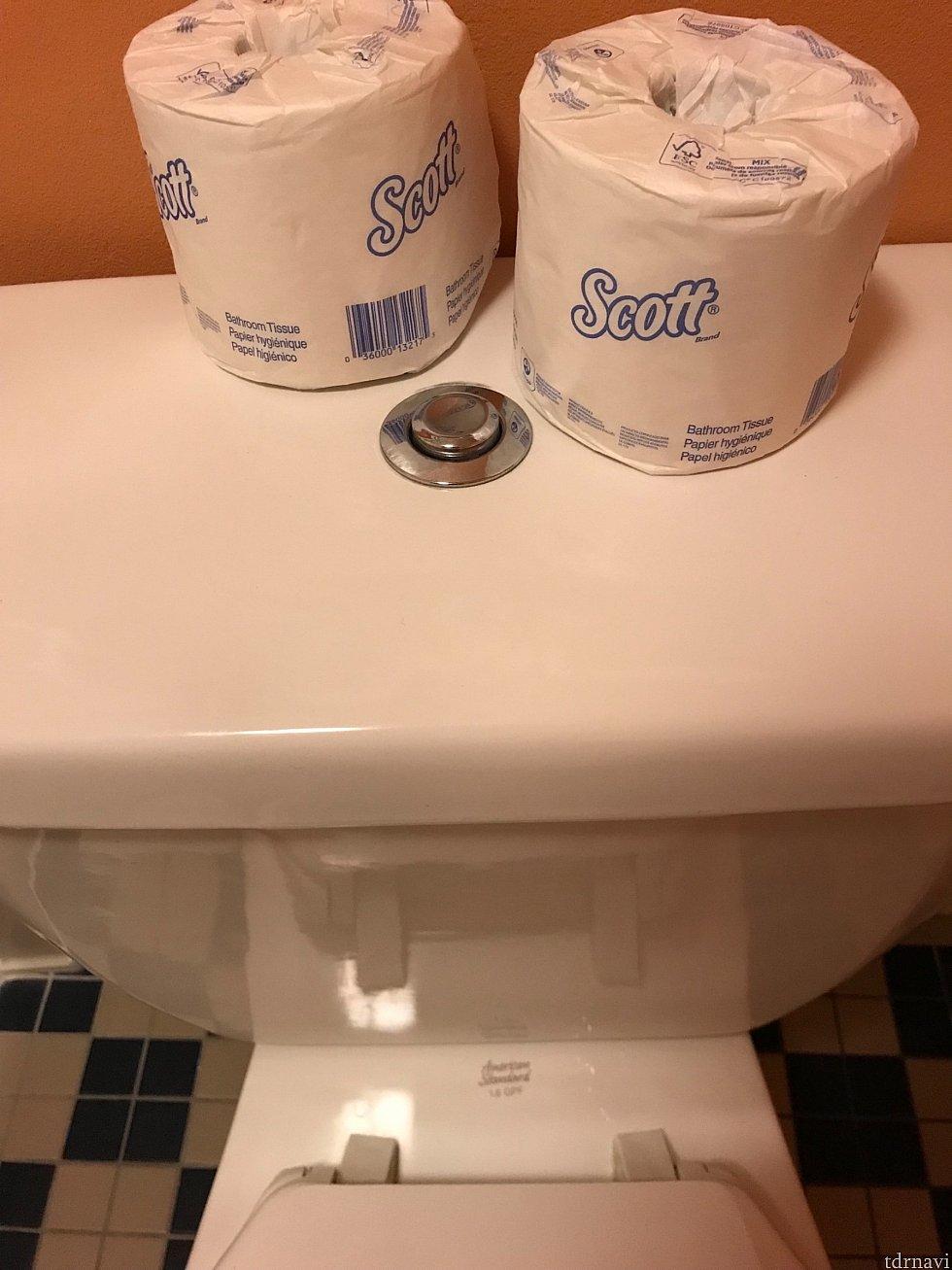 こちらはお風呂の真横にあるトイレです 写真に見えている銀色のボタンを押して流します トイレットペーパーの予備は常に二つありました