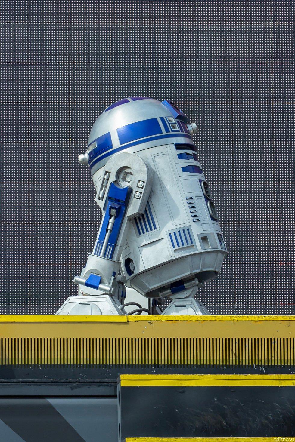 R2-D2はハリウッド・スタジオでグリーティングしてないので、新鮮✨✨