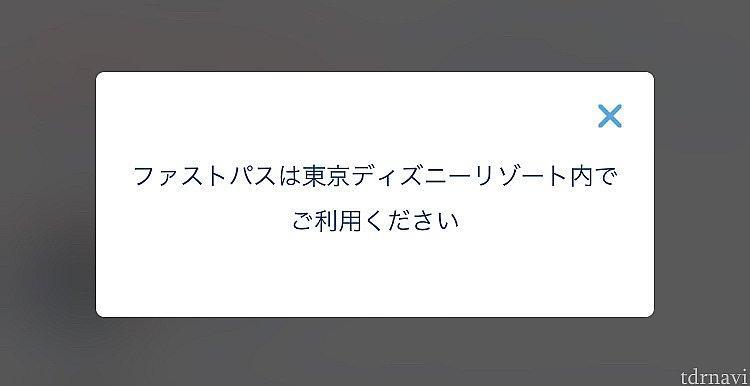 当たり前ですが、東京ディズニーリゾート内のみでの利用です😁💦