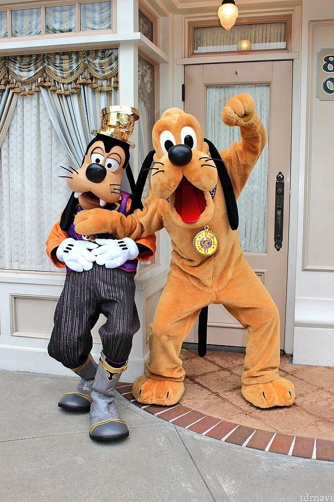 グーフィーとプルートはとても仲良しでした😍 (グーフィーはお腹が空いたみたいです)
