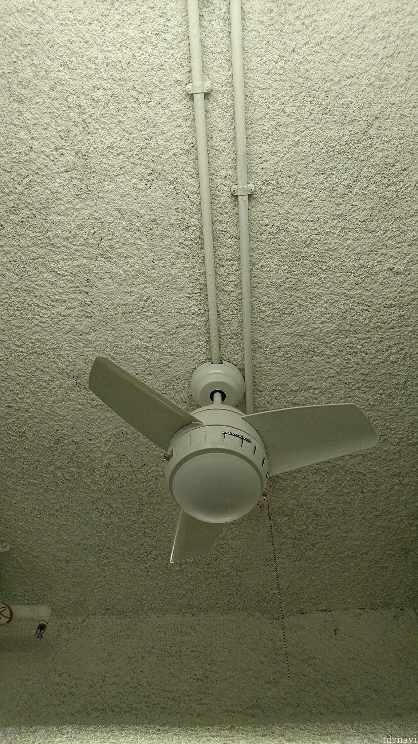 天井です。