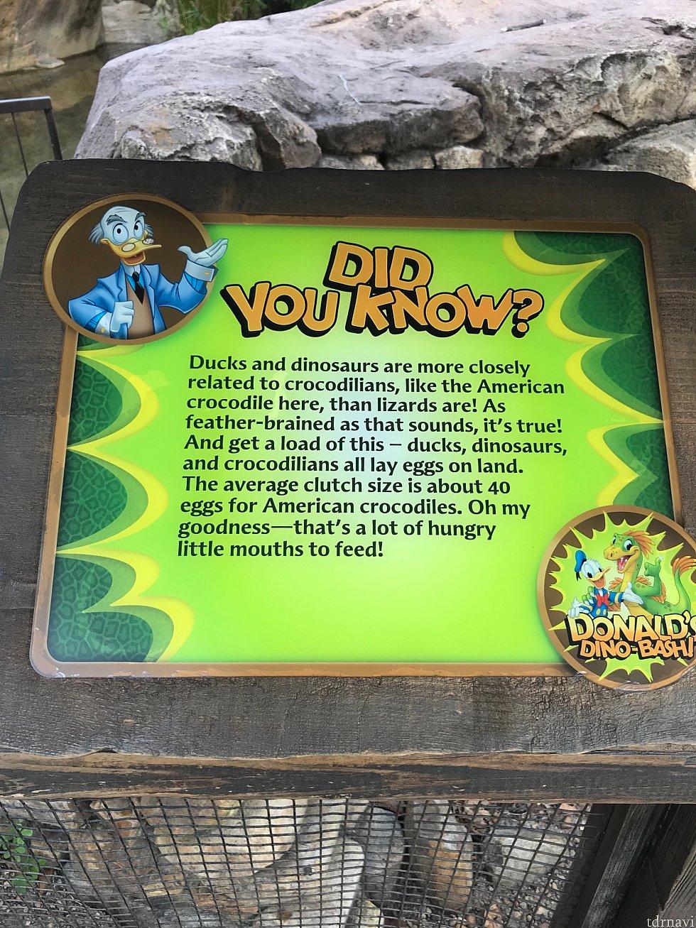 恐竜について情報が書かれています。