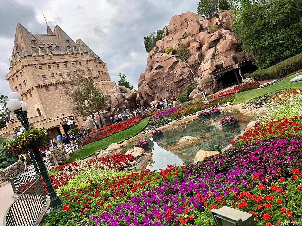 イベント期間中は各国パビリオンも、お花やその国に由来する植物で飾り付けされます。写真はカナダ館の庭園です。