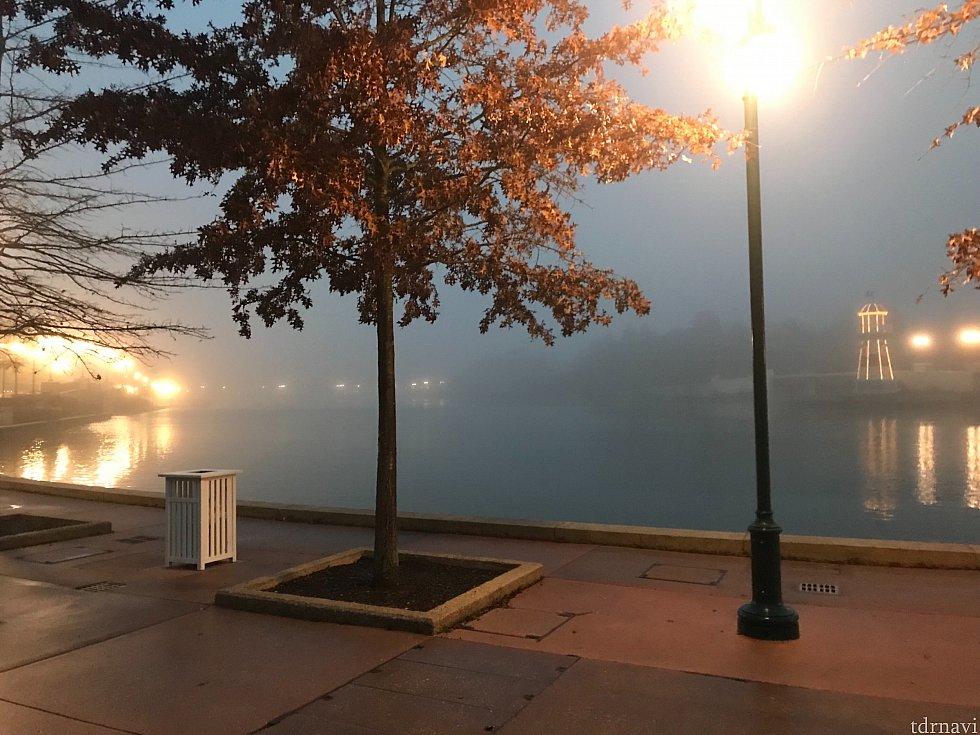 朝ホテルの裏からパーク方面へ出たところ。水辺があるので冬場は寒いですが、ここを越えればパーク付近が暖かく感じます笑