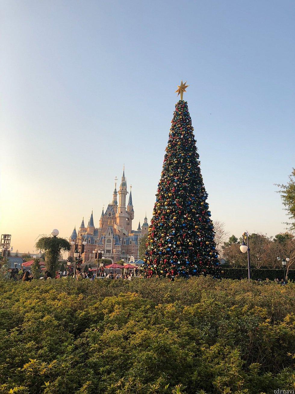 ②のツリー後ろ。事前にツリーとお城が良く見えそうな場所を下見しました。