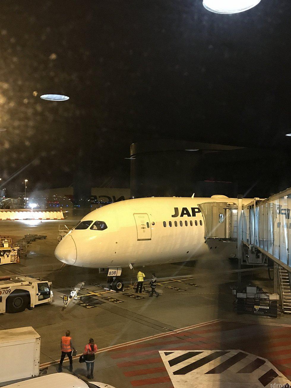 帰りの飛行機。 成田線は787で行きより更に座り心地良いです。