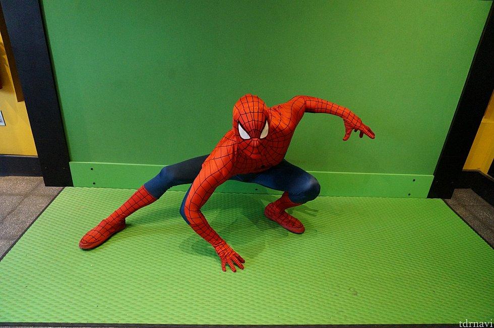 スパイディーーー!!! カッコいいです!!! 写真の販売があるため、背景が緑です。