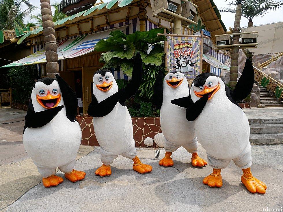 【グリーティング】 1日に3回ショーを見たのに、翌日もまた初回を見に行きグリーティング😆 ハリウッドでも2匹ずつしかグリーティングに出ていないので、恐らくペンギンズ全員と同時に撮れるのはここだけ😆