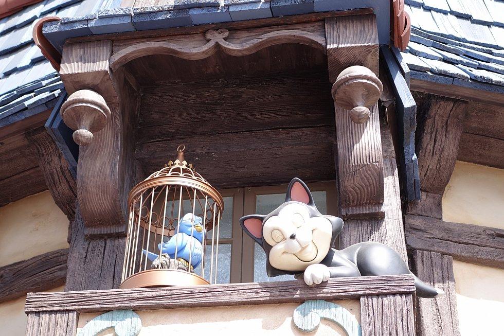 【外観2】そしてピノキオのお家にはフィガロがいます!数分間隔でフィガロが目を覚まして小鳥とおしゃべりしてました!