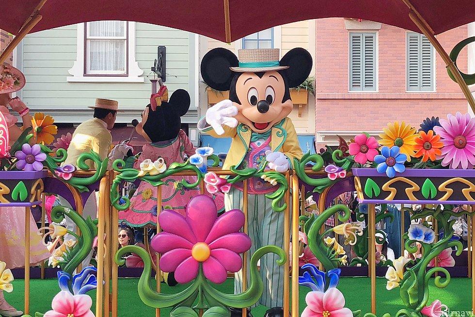 フロートの装飾もお花がいっぱいでとってもかわいいです💕