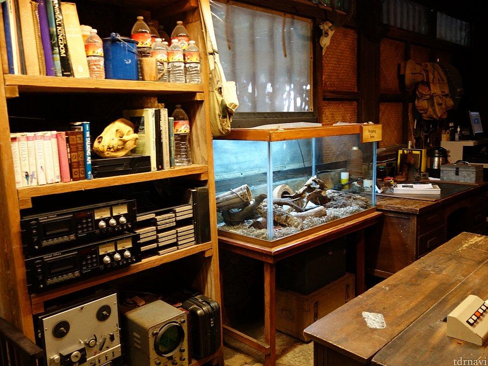 小屋に入ると研究室になっていて爬虫類などが展示されています