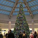 オーランド国際空港のクリスマスツリー