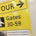 モノレールに乗ってバスで移動する事に 初体験😂