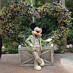 2015年5月もいらっしゃいました!淡いグリーンのジャケットがかっこいいミッキー!