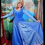 これはプロ撮影のオーロラ姫。出口で販売しています。