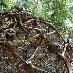 映画「パイレーツ・オブ・カリビアン」に登場した骸骨の檻。中に入って記念撮影できます。