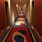 廊下です。絨毯がフカフカでした!