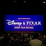 かなり大きいシアターです。クーラーも効いている室内で映画を楽しみましょう。