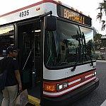 ボードウォークが近くて良かった…ホッとしてバスに乗り込みます