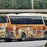 グリズリーガルチ柄のバス