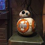 BB-8がいました!