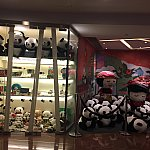 たくさんのパンダのぬいぐるみがお出迎えしてくれます