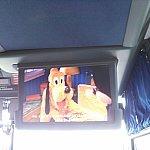 ディズニークルーズラインのシャトルバス