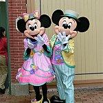 かわいい春コスチュームのミッキー&ミニー!!写真で見るより本物は何倍もかわいいです!!!
