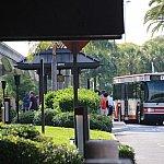 各パークへのシャトルバス乗り場。