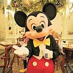 こんなかわいいミッキーとがっつり触れあえるレストラン☆ディナーはイベントのコスチュームだったりします。