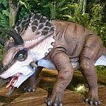 置物の恐竜もいますが、時間によっては自動的に動く小さなロボットも