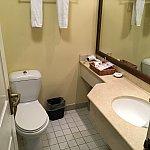 洗面台とトイレ。かなり余裕があります