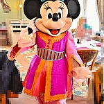 ミニー。 とっても小さくてかわいらしかったです。パンツのオーガンジーにも刺繍が入っていてホント素敵なコスチューム。