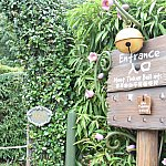 ピクシーホロウの入り口です。シンデレラとリトルマーメイドのエリアの間にあります。